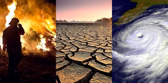 Save the environment and stop climate change